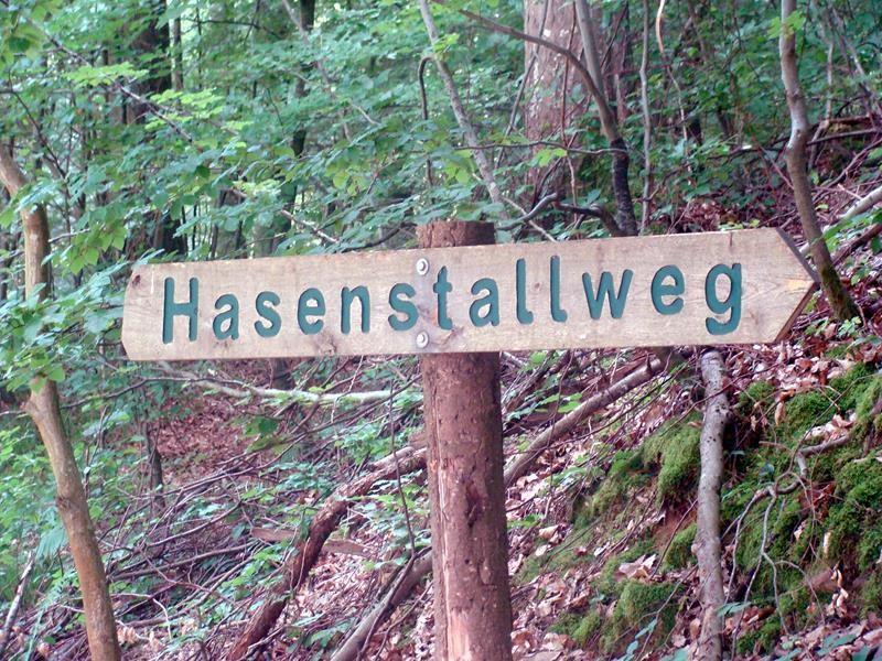 Am Schützenhaus vorbei führt dieser Weg Richtung Burg und Aussichtsturm.