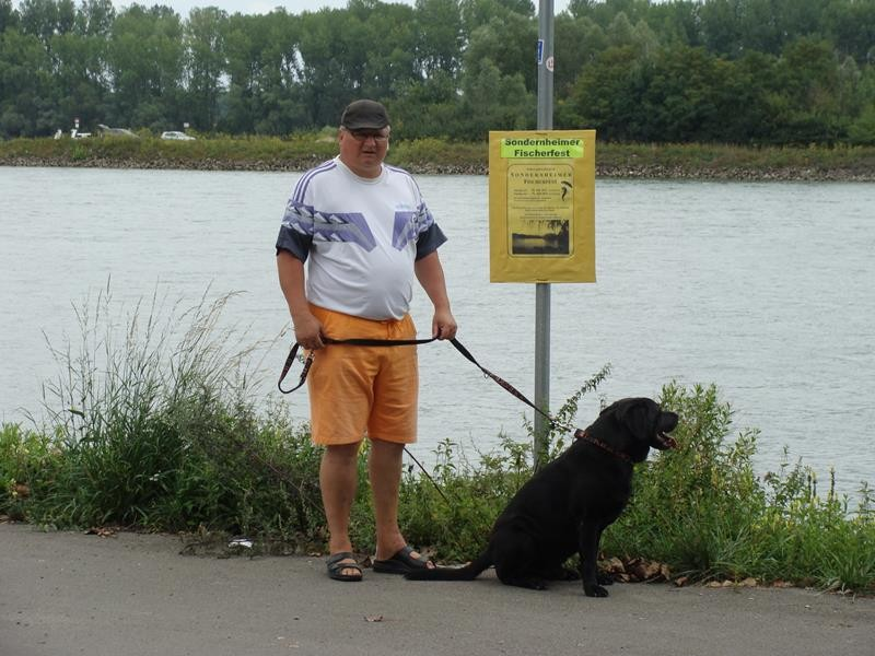 Spaziergang am Rhein