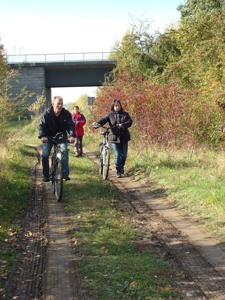 Teils fahren wir über Feldwege. Das ist sicher nicht mehr der offizielle Radweg, aber unmittelbar am Main.