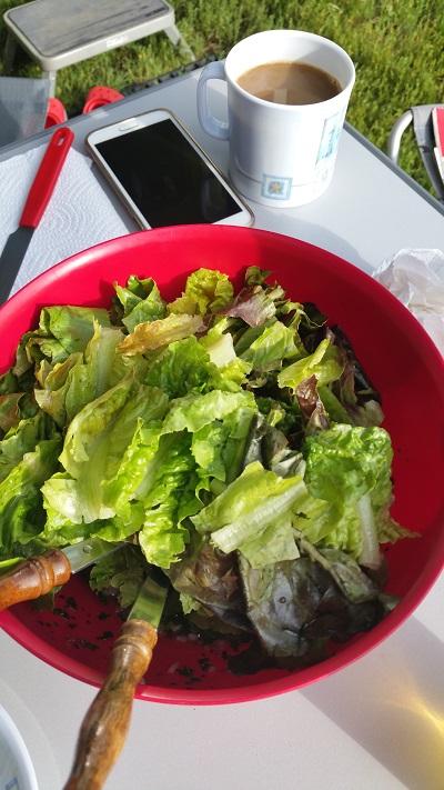 dazu gibt es einen toll gemachten Salat von Britta. Ein tolles Gericht ohne große Mühe zubereitet