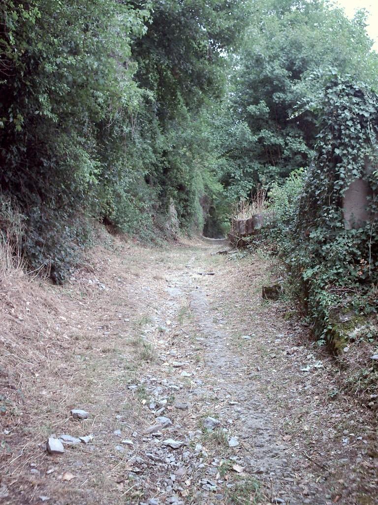 Den weg entlang.....