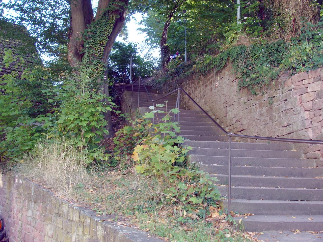 Viele - wirklich sehr viele Stufen.