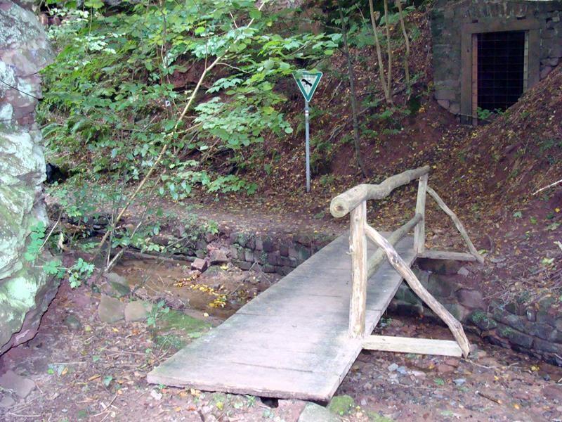 Hier geht es in die Schlucht. Sie liegt unterhalb der Klingenburg.