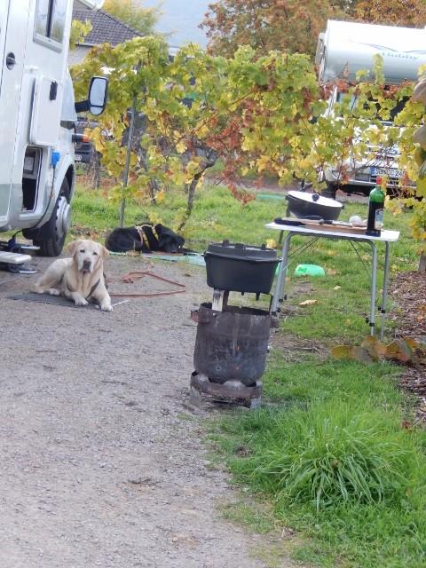 Rotschi macht auf offenem Feuer in seinem PetroMax einen Rinderschmorbraten. Barone und Nero bewachen alles