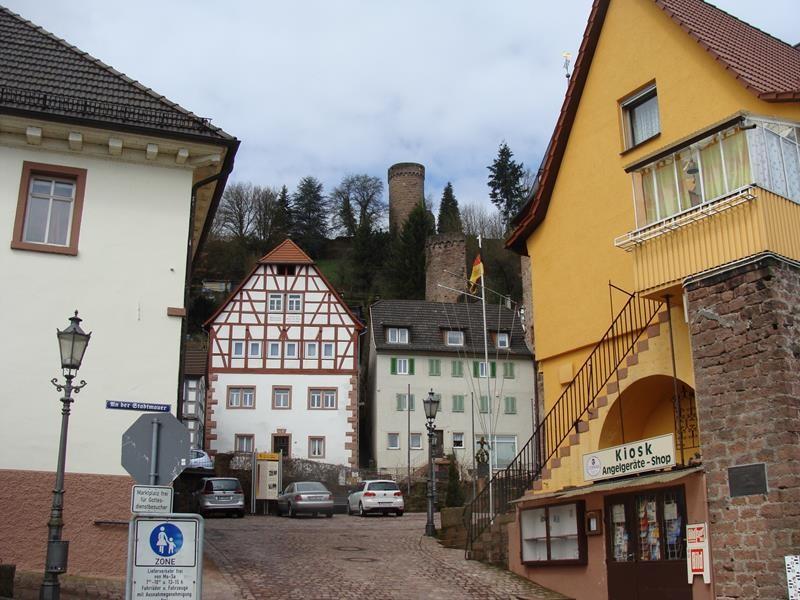 Schöne Häuser entlang des Neckar