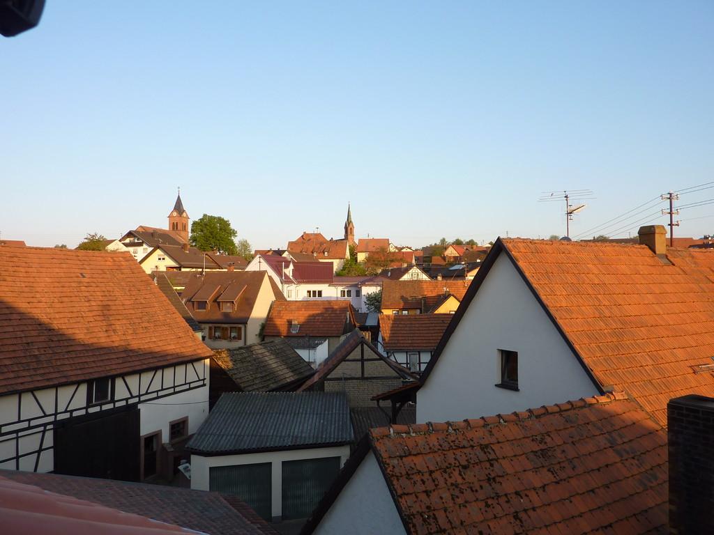 Schollbrunn