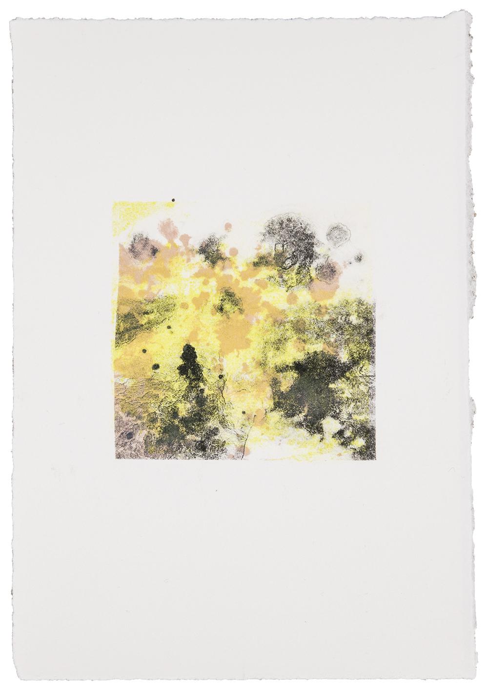 """Kathrin Edwards (Germany) """"florales Bild aus einer Serie"""""""