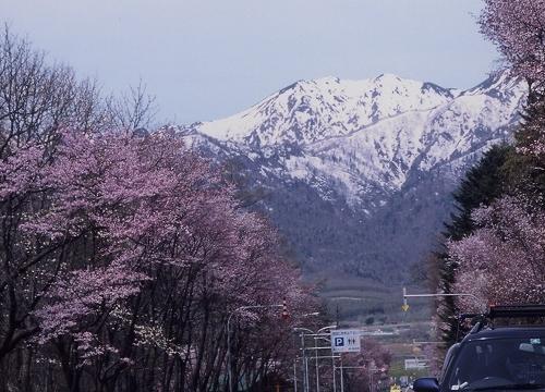国道38号線富良野市山辺付近より芦別岳(2002年5月)