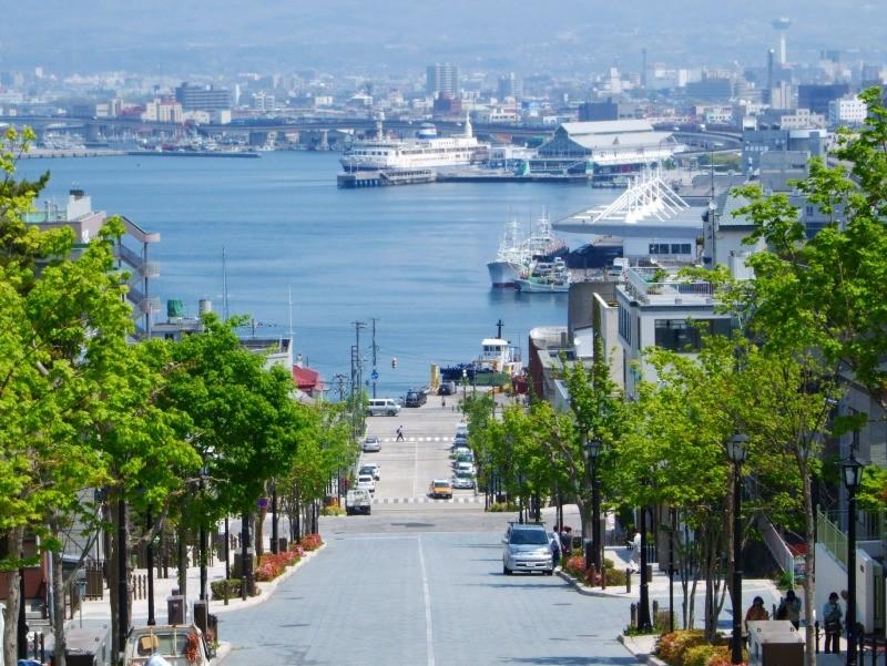 函館港を見下ろす八幡坂(2008年5月)