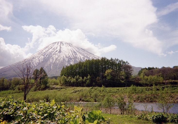 真狩村から見る羊蹄山(2001年6月)