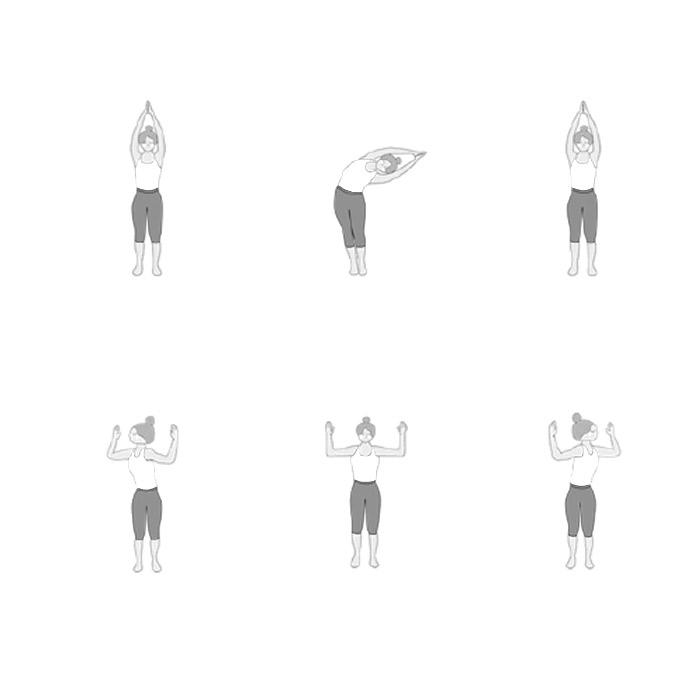 8 Richtungen der Wirbelsäule