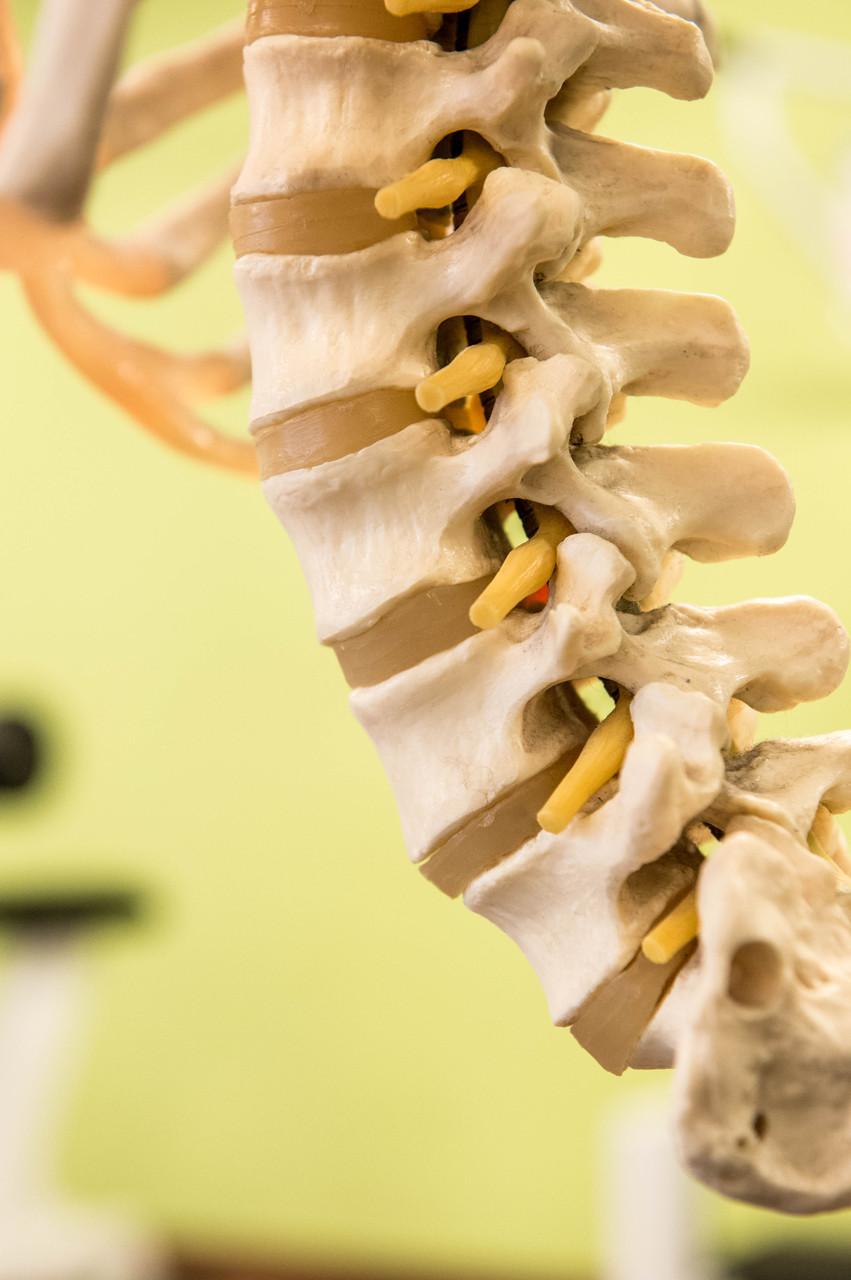 Evidence Based Therapy bei alle orthopädische und neurologische Beschwerden/ Krankheiten