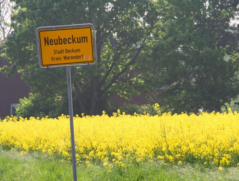 Neubeckum