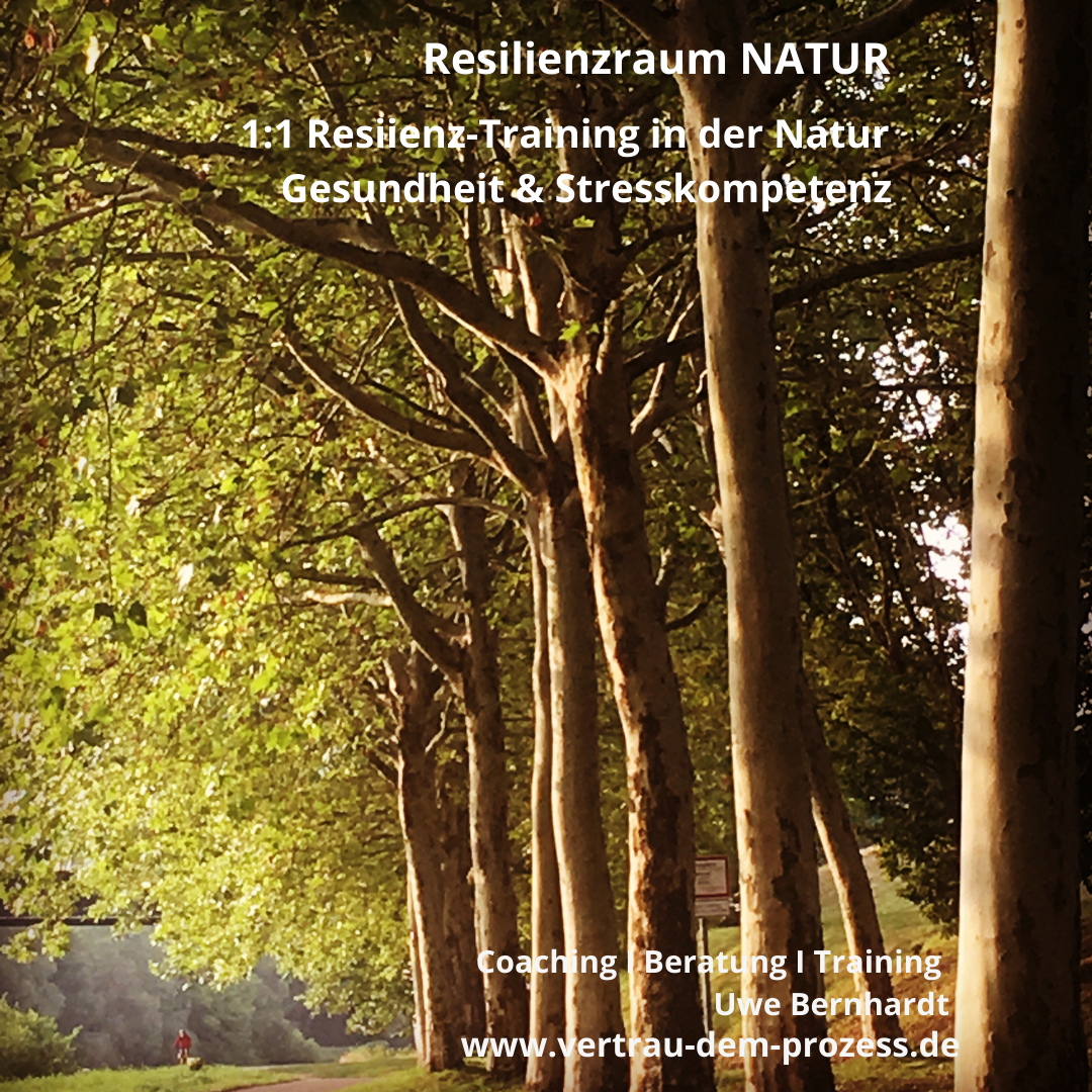 Resilienzraum Natur
