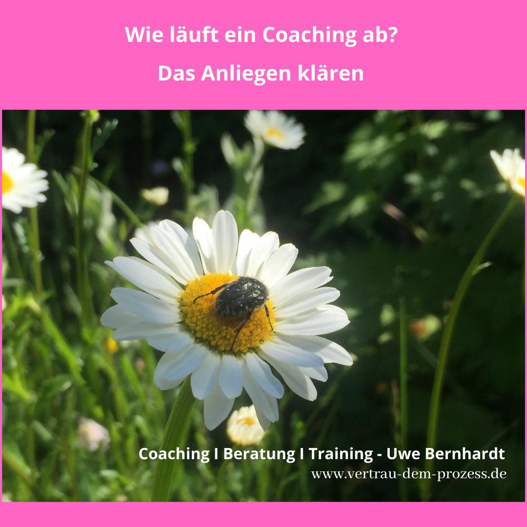 Wie läuft ein Coaching ab?