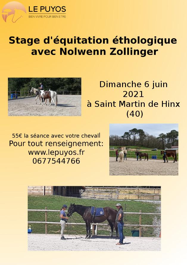 Stage d'équitation éthologique avec Nolwenn Zollinger