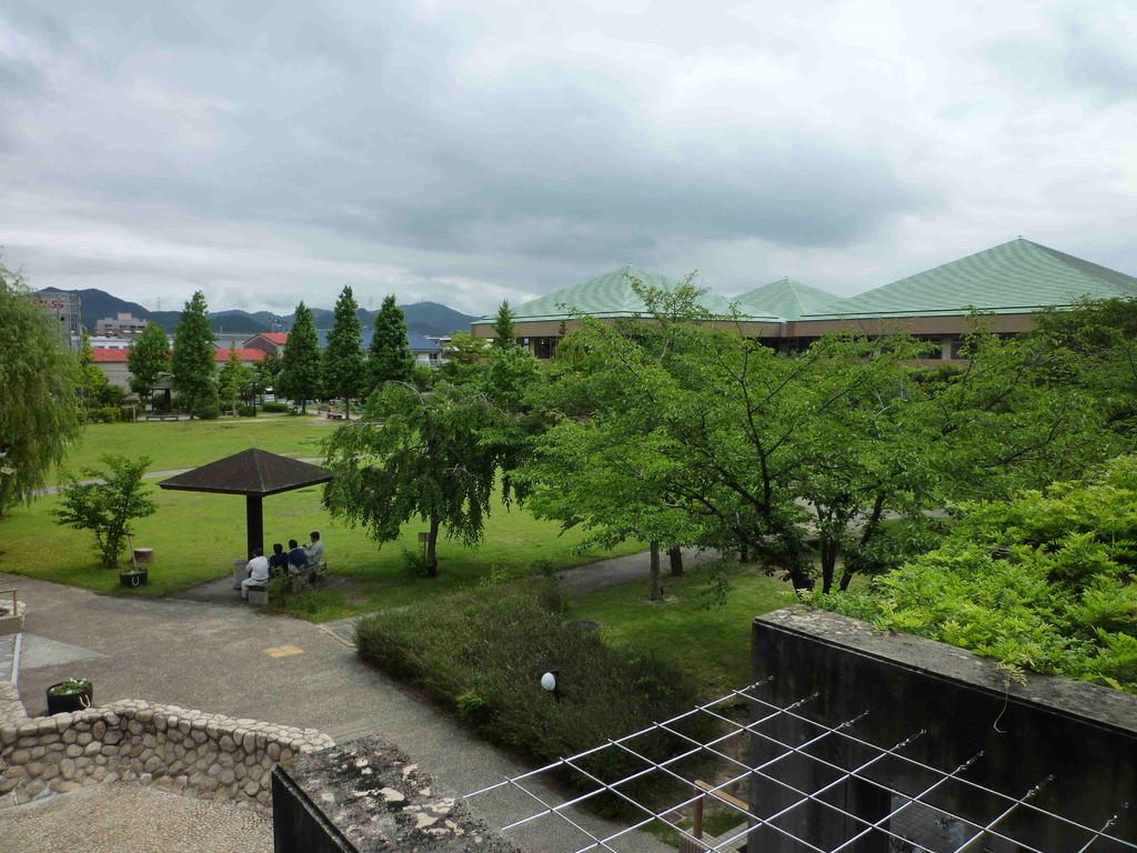 緑豊かな芝生広場と
