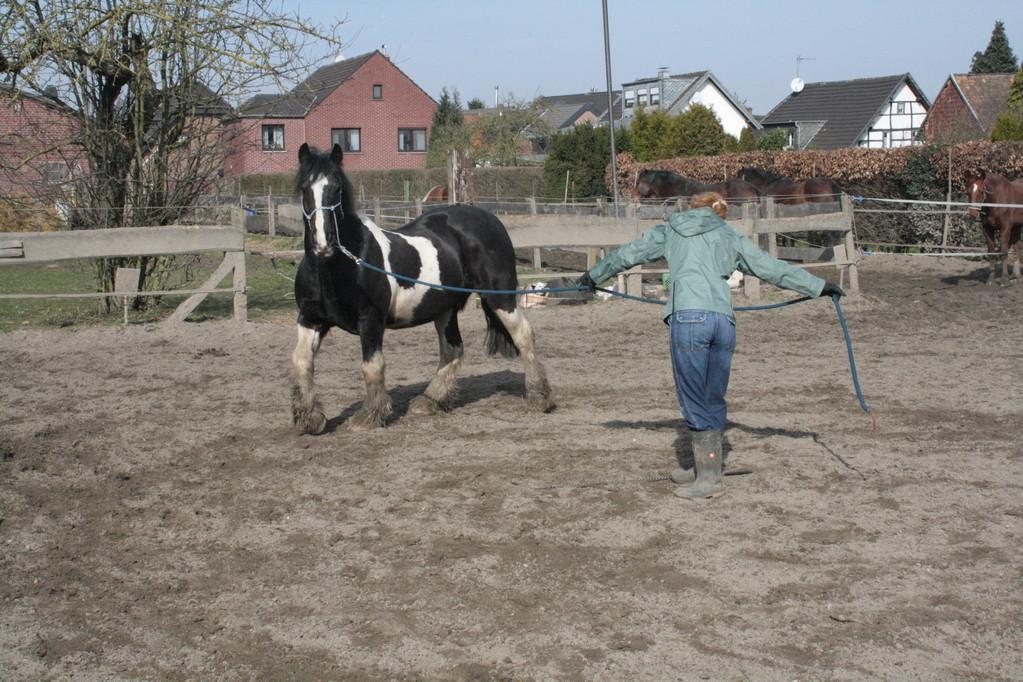 Pferd zu sich in die Mitte holen