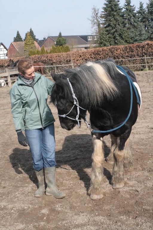 durch antippen auf der Schulter,biegt das Pferd den Kopf zur Seite