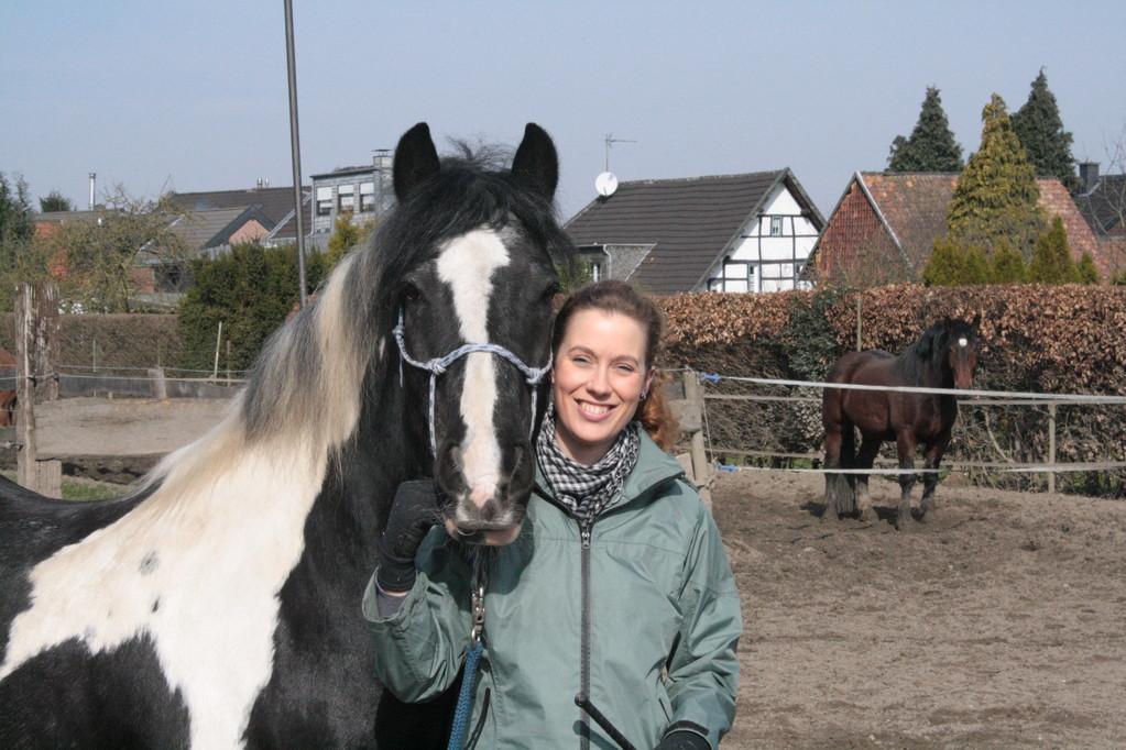 Happy Horse