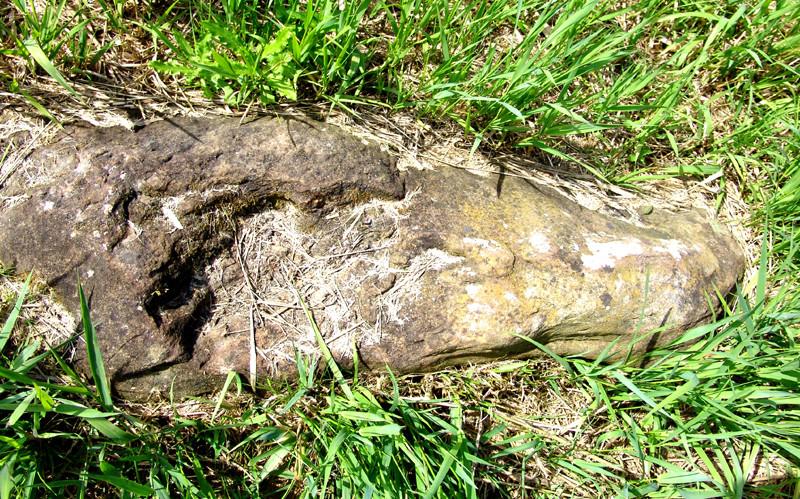 L'alignement d'Eppeville- Une des cinq pierres est maintenant couchée