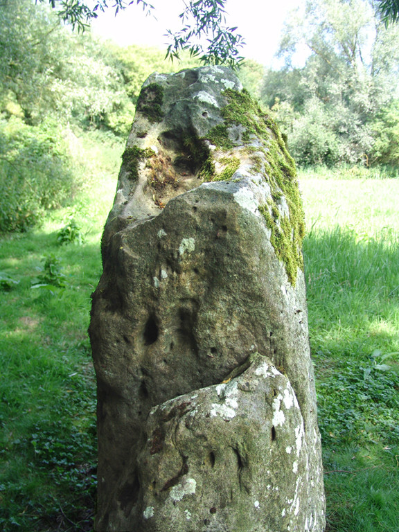 L'alignement d'Eppeville- La pierre qui pousse