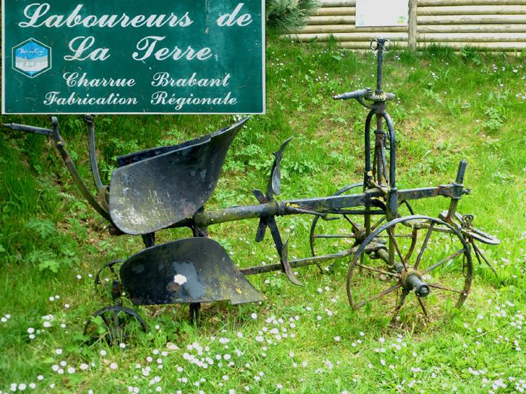 Au bois de Cise (commune d'Ault)