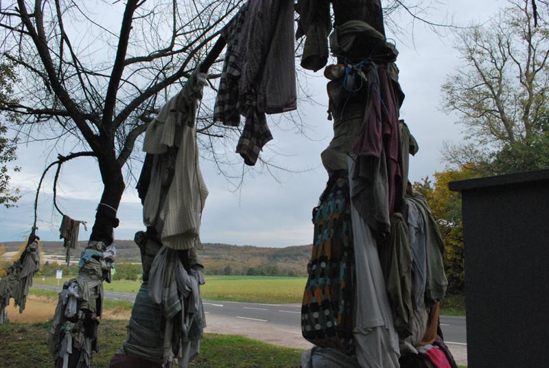 Les arbres à loques de Senarpont