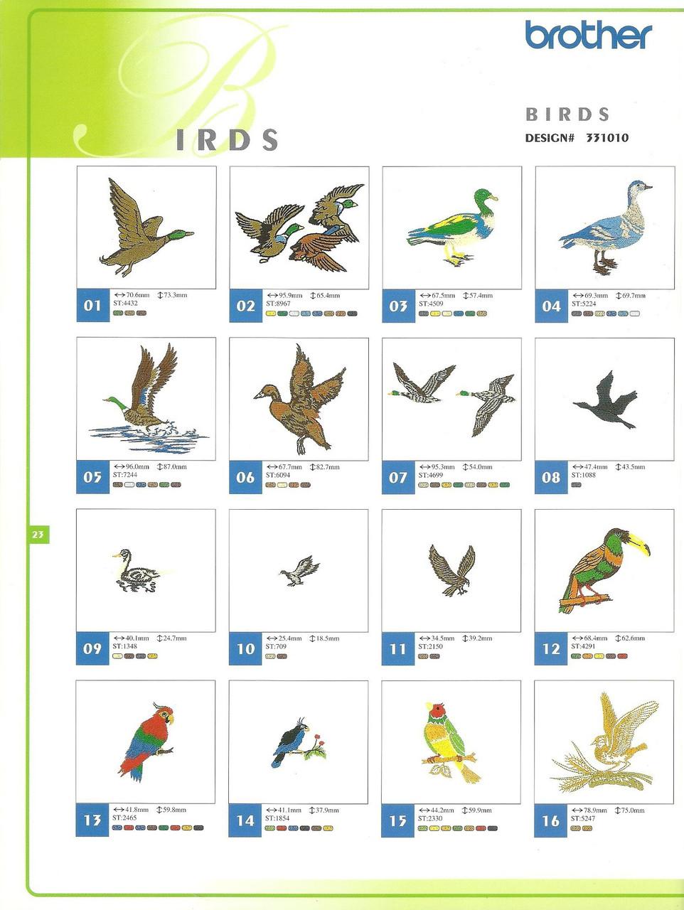 331010 Birds