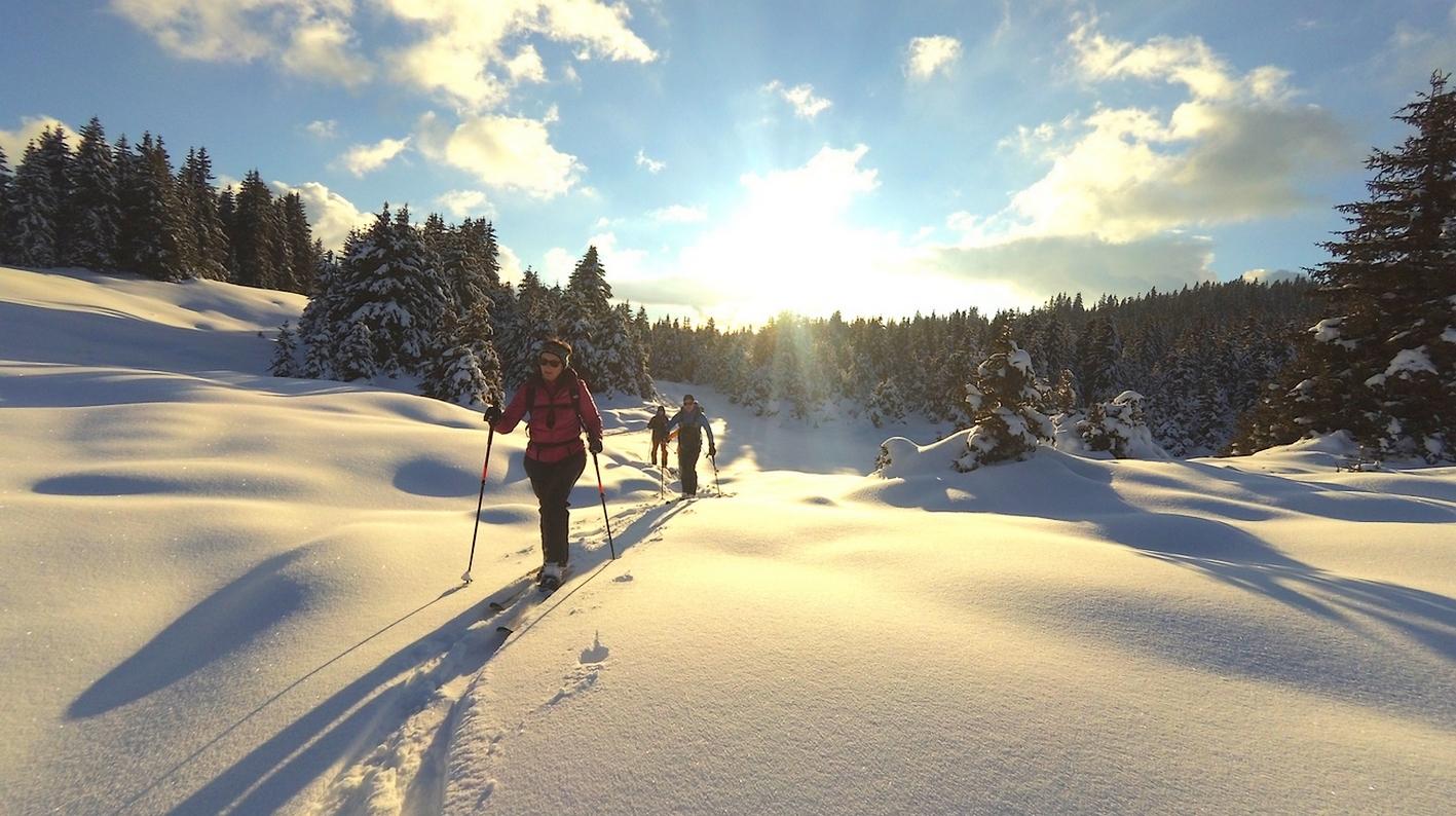 Le ski sauvage et nature
