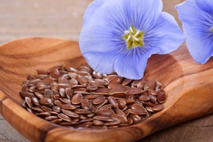 Leinsamen - Ungesättigte Fettsäuren, Ballaststoffe, Eiweiß, Vitamine, Mineralien