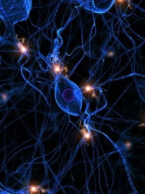 Efficient nerve cells