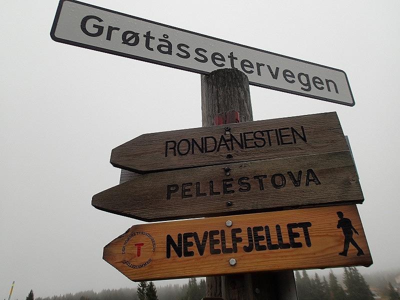 Rondaneへつづく道標を見るとじんとくる。今日はNevelfjelletへ