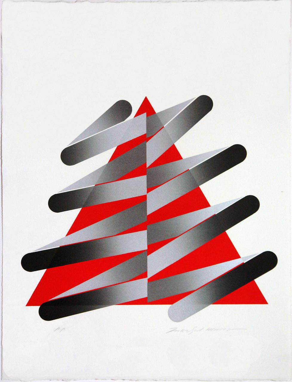 STROKES 78-4 1978  Lithograph 66x50cm ED.50