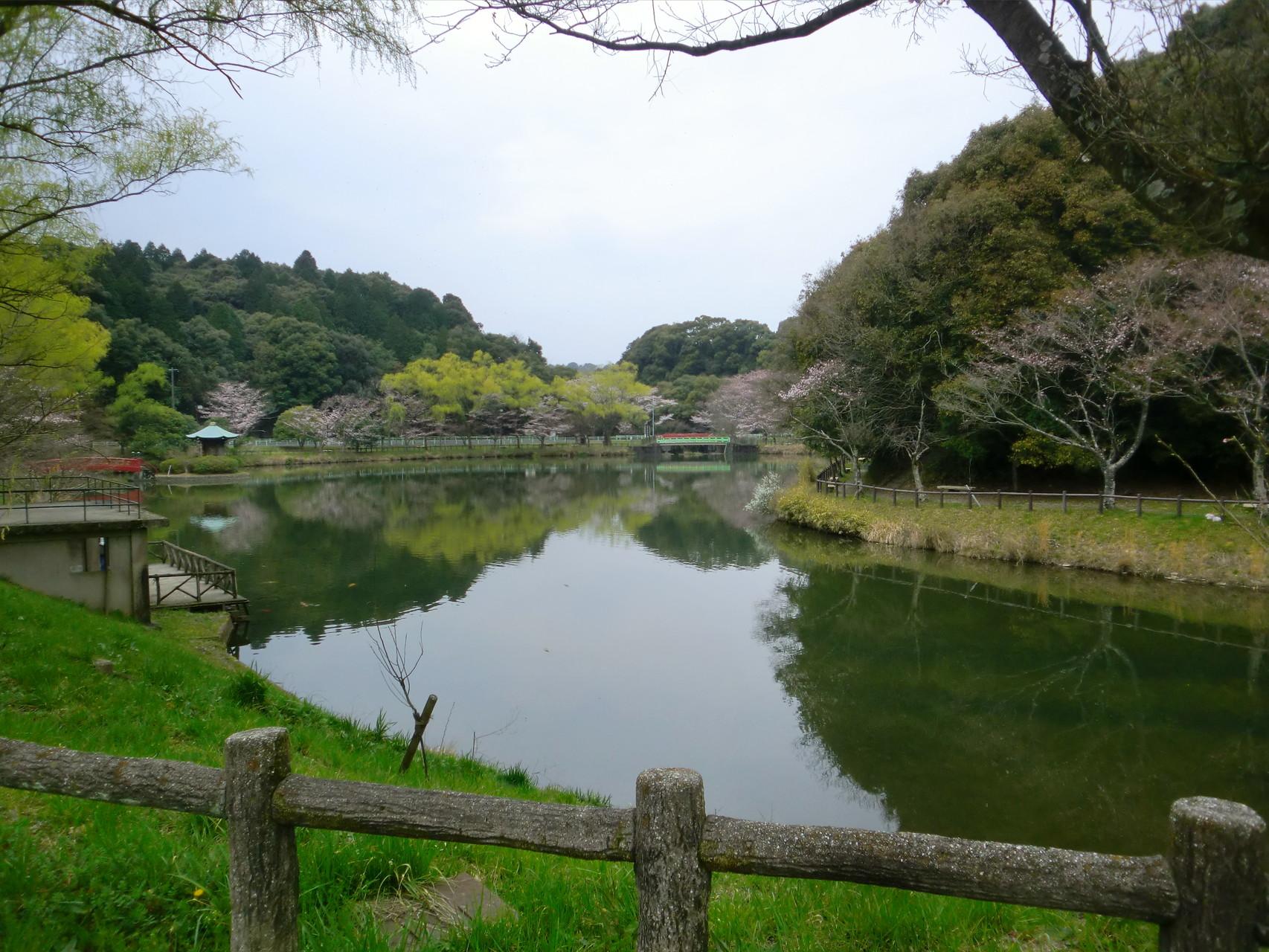 池の周りを歩きました。
