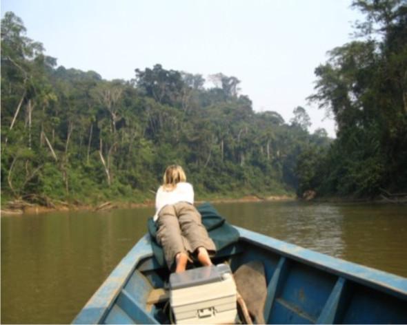 viaje en la selva