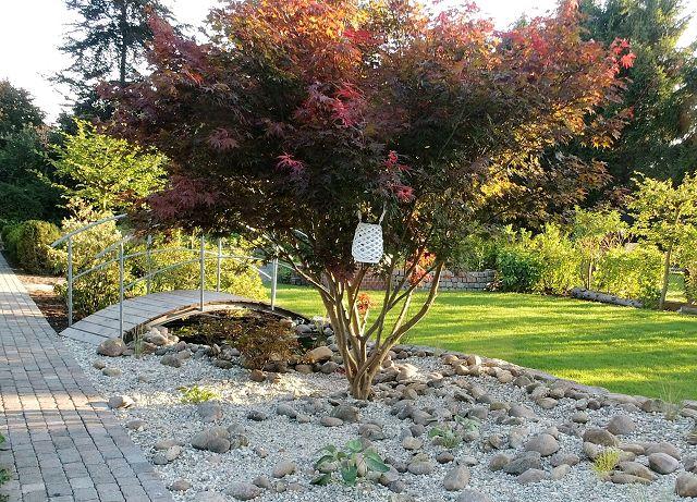 Neue Ideen Für Ihren Garten