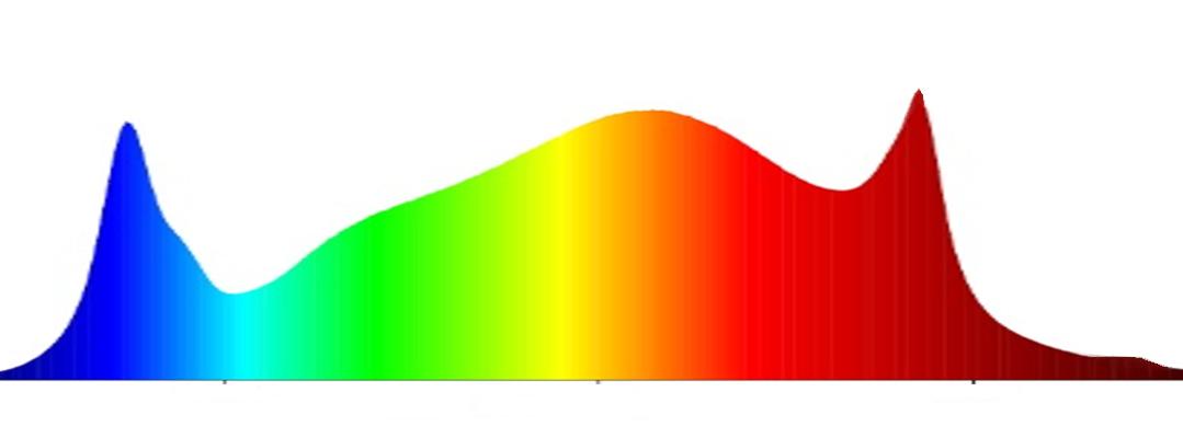 Horizon Areas X1 Swiss Made Pflanzenlampe cannabis Spektrum