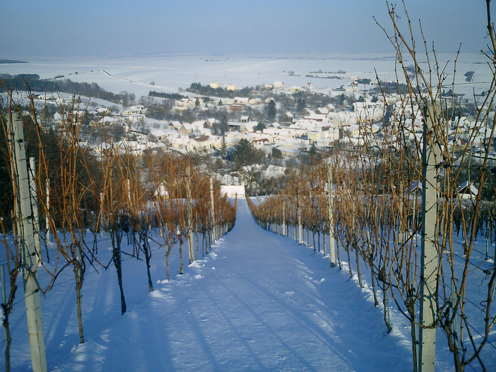 Blick auf Hannersdorf im Winter
