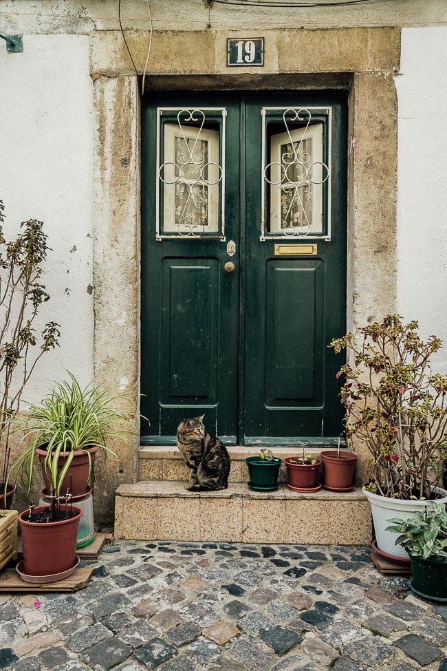 Lissabon - Fotograf Dresden
