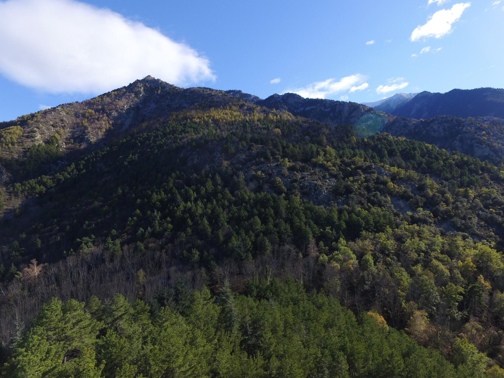 Vue depuis le Col de Juell