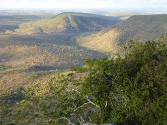 Safari Shimba Hills