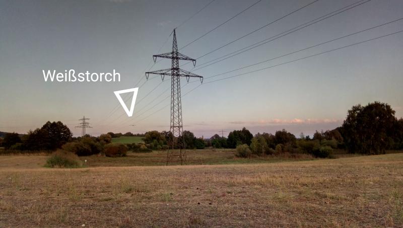 Im Hintergrund liegt ein Naturschutzgebiet. Ich bemerkte an dieser Stelle sehr laute Vogel-Geräusche und konnte aber zunächst nicht orten wo sie her kamen.