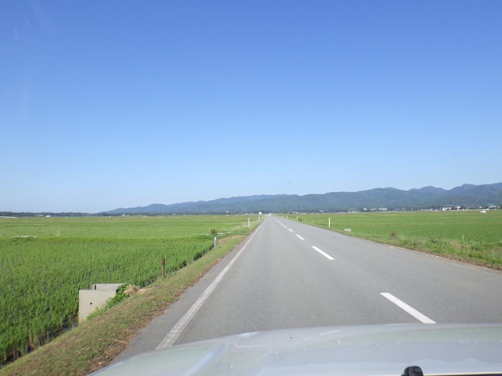 少し北海道っぽい見渡す限りの水田