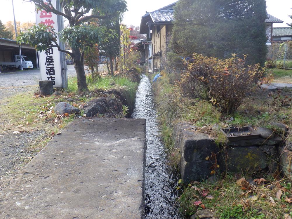町中の水路って気になりますね