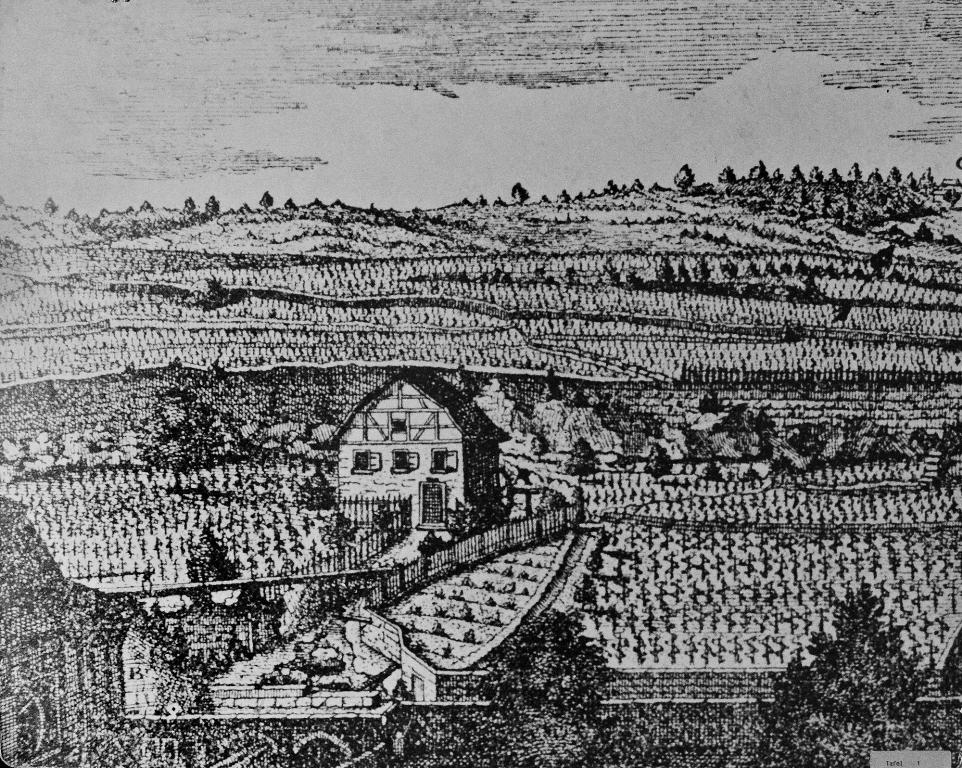 Radierung von David Herrliberger 1758, nach einer Zeichnung von Samuel Friedrich Neuhaus ,(1733 - 1802) mit Rebberg. Pulver-Stampfe vor 1849 abgebrochen.