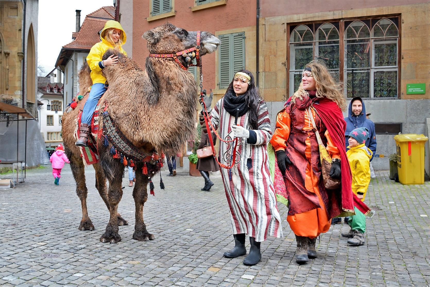 Kamelreiten in den Gassen der Altstadt / Balade à chameau, ruelles de la Vielle Ville