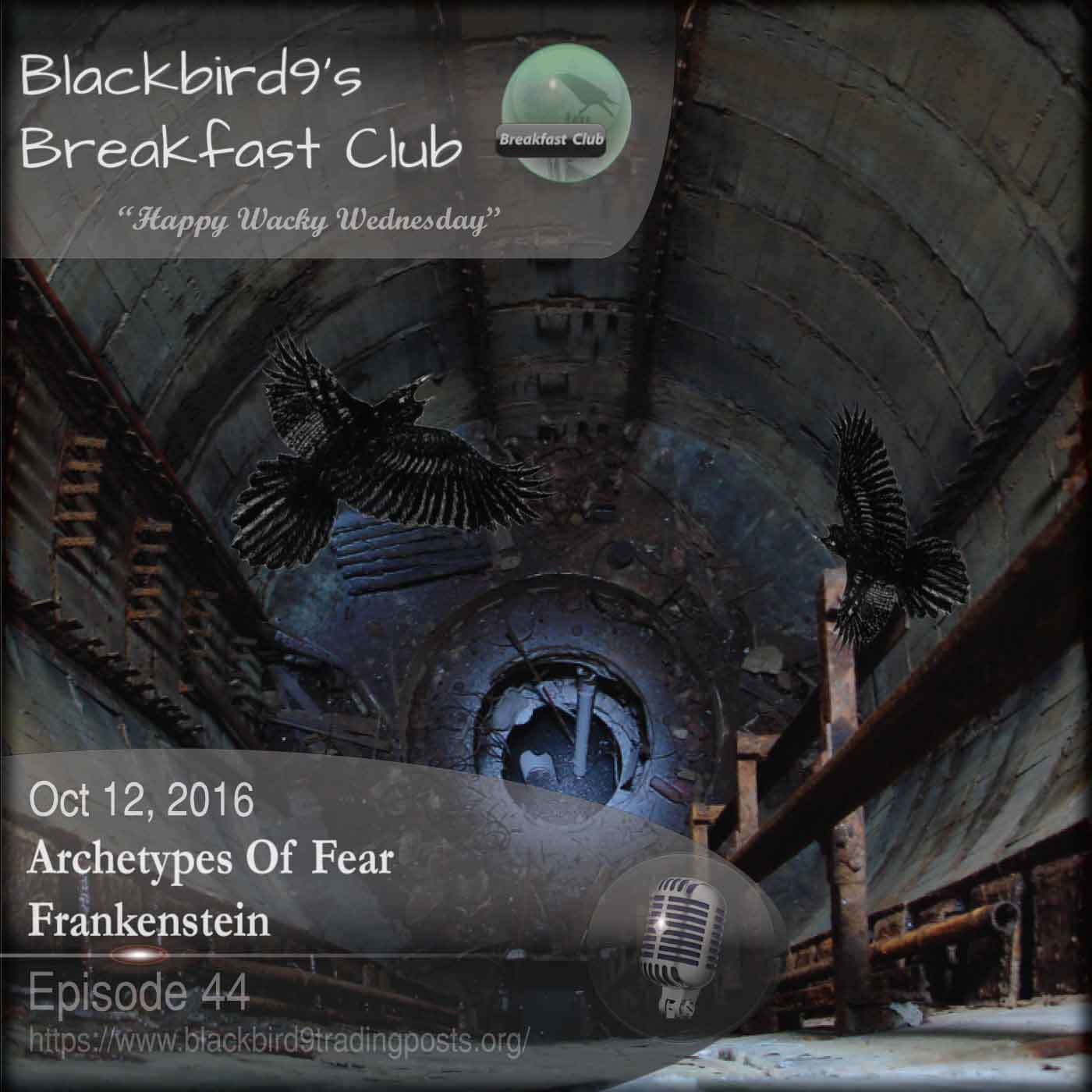 Blackbird9's Archetypes of Fear Podcast covering Frankenstein - October 12 2016