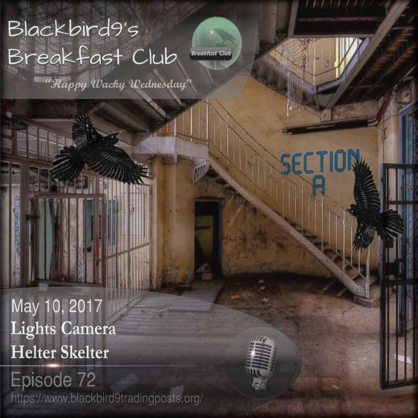 Lights Camera Helter Skelter - Blackbird9