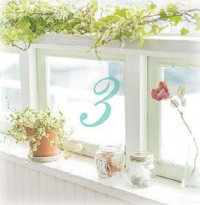 window with flower no3